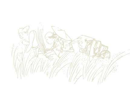 カツヤの「ます」の歴史