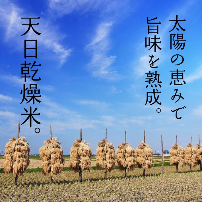 太陽の恵みで旨みを熟成。天日乾燥のお米